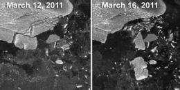 Tohoku tsunami created icebergs in Antarctica