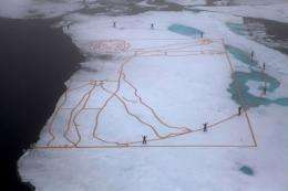 Tthe Arctic ice cap could disappear entirely during the summer months within a few decades