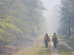 UGA study documents lung function declines in firefighters working at prescribed burns