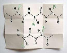 Understanding proteins