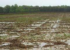 Wet spring seriously delays planting and harvesting for Pa. farmers