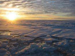 Why climate models underestimate Arctic sea ice retreat ?