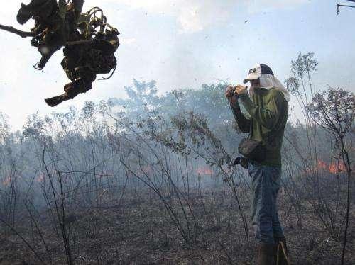 As Amazon urbanizes, rural fires burn unchecked
