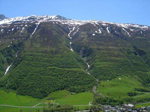 Consequences of abandoning Alpine meadows: Observation alone will change nothing