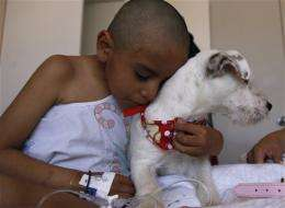 Dogs give emotional boost to sick kids in Quito