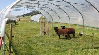 Experimenting with the effects of climate change on mountain pastures