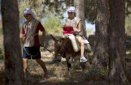 Israeli biblical park outfits donkeys with Wi-Fi
