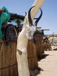 Largest genomic study shows Khoe-San peoples are unique