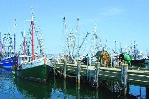Mid-Atlantic Sea Grant programs identify key ocean, coastal research needs