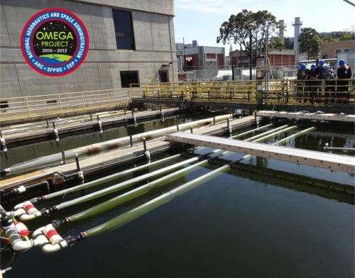 NASA shows off new algae farming technique for making biofuel