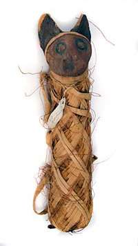 Unwrap a mummified Egyptian cat