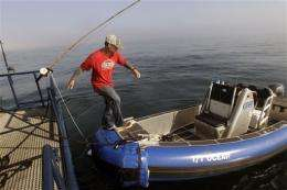 Researchers tag great white sharks off Cape Cod
