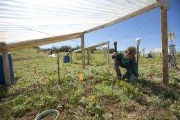 Studying soil to predict the future of earth's atmosphere