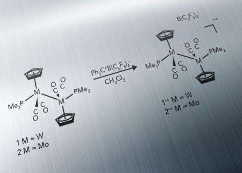 Searching for Molecular Radical's Secrets of Stability