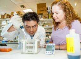 Researchers find potential cancer roadblock