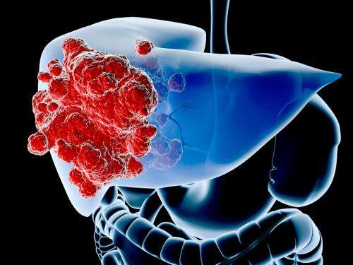 Identification of mutations common to half of all liver cancers provides leads for new therapeutics