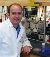Scripps Research Institute scientists solve a mystery of bacterial growth and resistance
