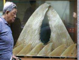 Environmental groups welcomed the move but shark fin merchants said it threatened their livelihoods