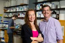 Researchers looking to exploit bacterial immune system for medicine and industry