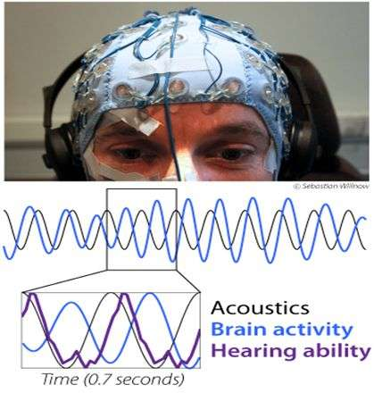 Researchers find that listening abilities depend on rhythms in the brain