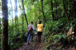 A couple stroll along a track at La Tigra National Park, 40 km northeast of Tegucigalpa, Honduras, on June 3