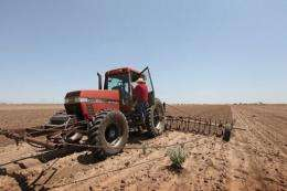 A farmer plows up a field where crops failed because of a severe drought in the region, in Texas in 2011