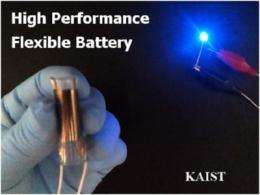 A KAIST research team has developed a high performance flexible solid state battery