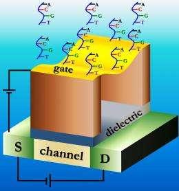 Ultrasensitive biosensor promising for medical diagnostics