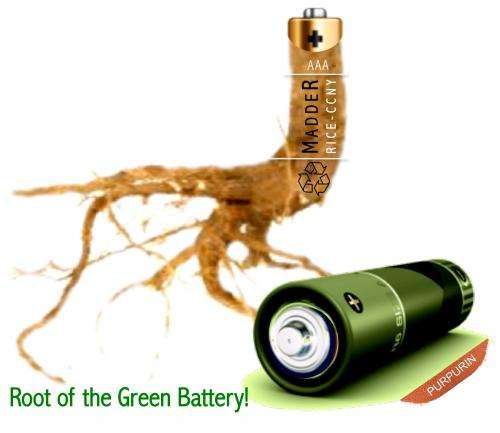 Ancient red dye powers new 'green' battery