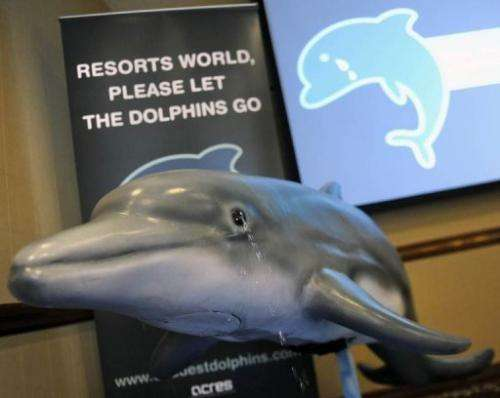 Animal Concerns Research and Education Society is urging a Singapore casino to free 25 dolphins from its marine park
