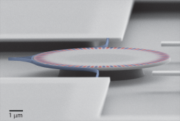 An optical diode made with silicon technology can be used for quantum information