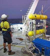 Aquatic robot audits health of seabed