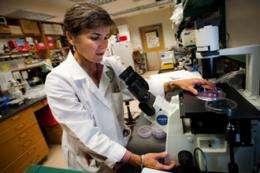A step forward for stem cell therapy
