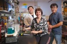 Biofuel from biomass one step closer to reality thanks to discovery to manipulate 'hot' microbes