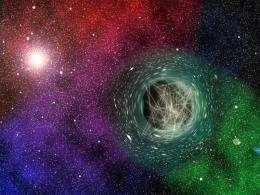 Black holes as particle detectors