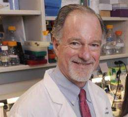 Cardiologists identify mechanism that makes heart disease worse in diabetics