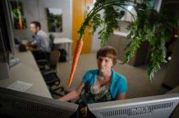 Carrots, not sticks, motivate workers
