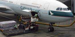 """Cathay Pacific has decided to stop shipping unsustainably sourced sharks and shark-related products,"" the airline said"