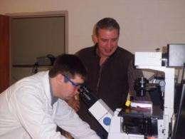 Chemists unlock potential target for drug development