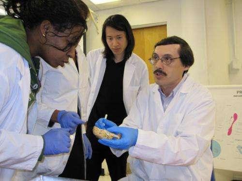 City tech professor helps discover groundbreaking virus detection method