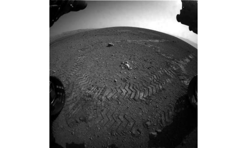 Curiosity in it for the long haul