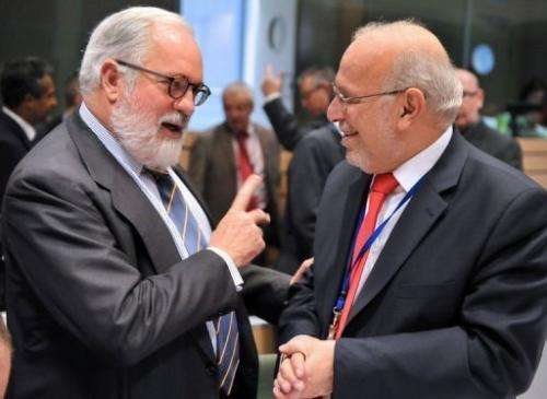 Cyprius Agriculture Minister Sofoclis Aletraris (R) speaks to his Spanish counterpart in Brussels on December 18, 2012