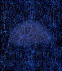 Data mining opens the door to predictive neuroscience
