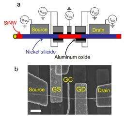 Physics team devises a way to make first undoped silicon nanowire gate