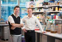 Disarming disease-causing bacteria