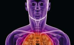 Ecological approach could help cystic fibrosis sufferers