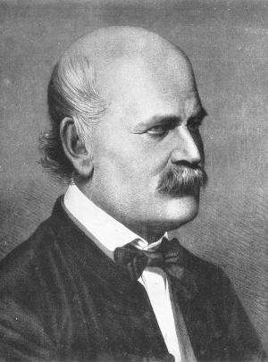 Emotion governs truth: New perception of politics based on semmelweis's dispute about hygiene