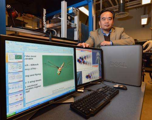 Engineer looks to dragonflies, bats for flight lessons