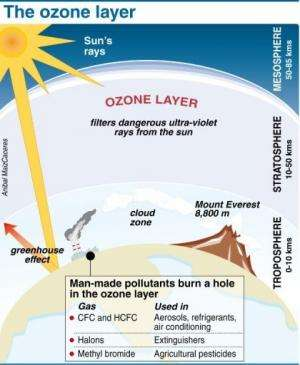 Factfile on the ozone layer
