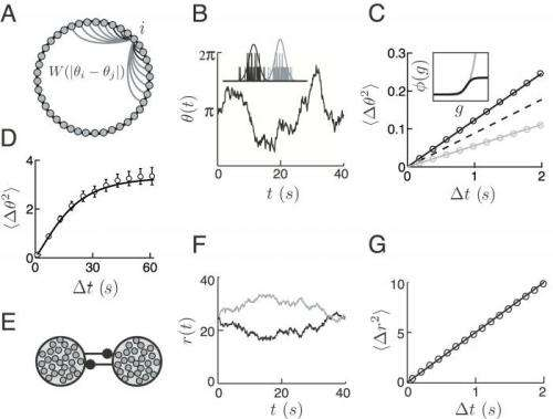 Of noise and neurons: Sensory coding, representation and short-term memory